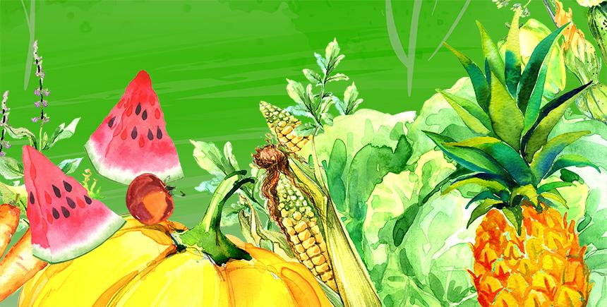 Montage of fresh produce
